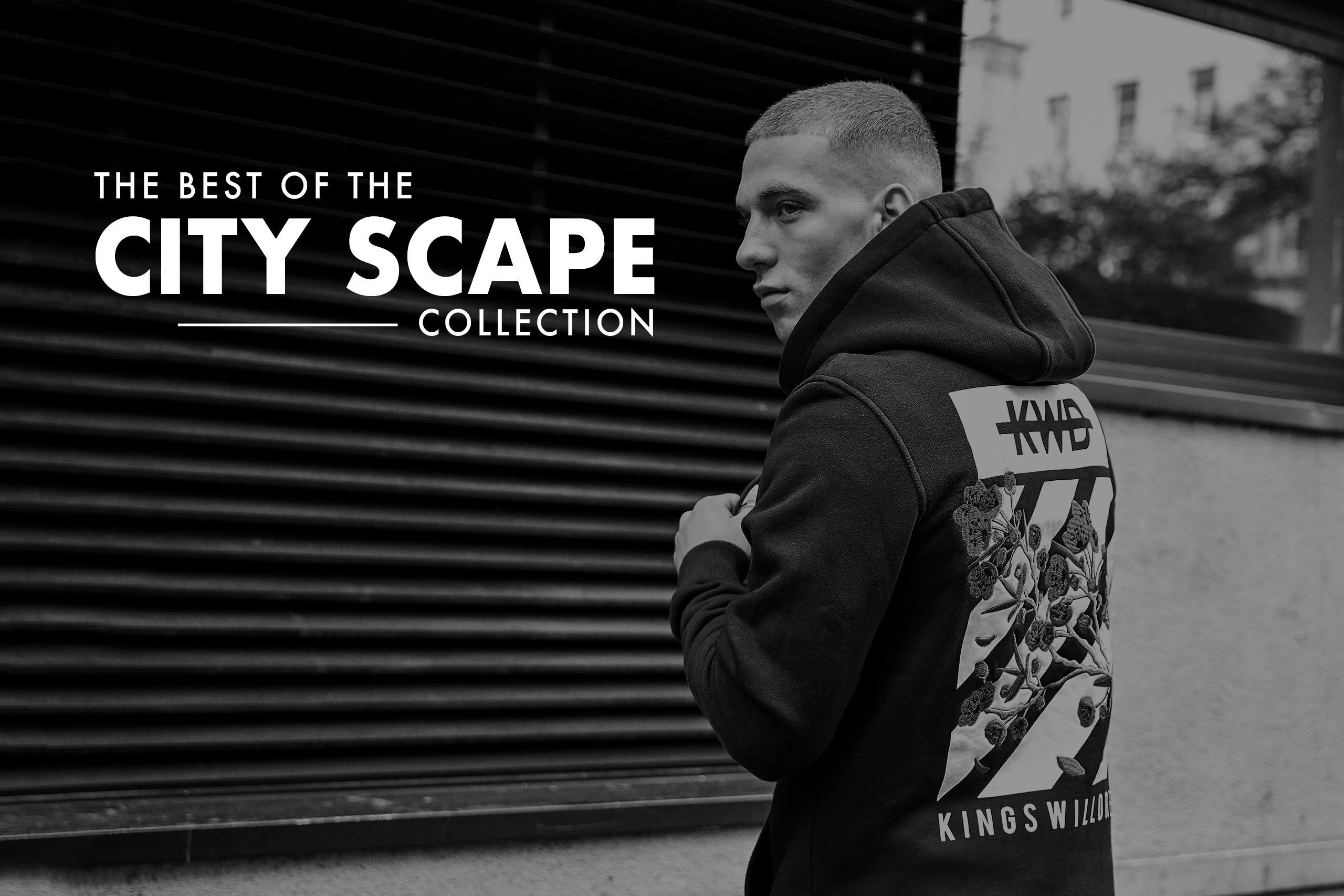 The Best of the City Scape Collection