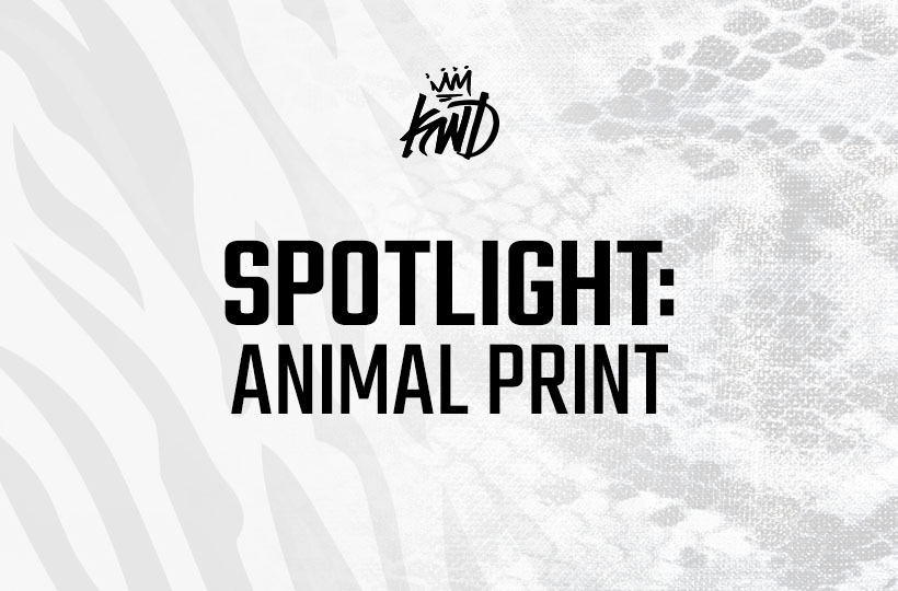 Spotlight: Animal Print
